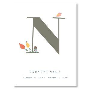 Namnposter - N