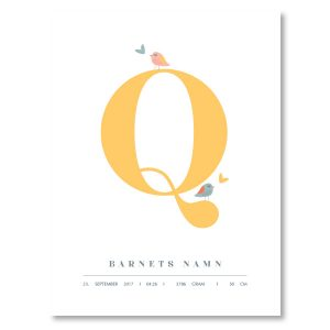 Namnposter - Q