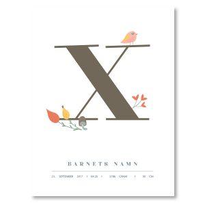 Namnposter - X